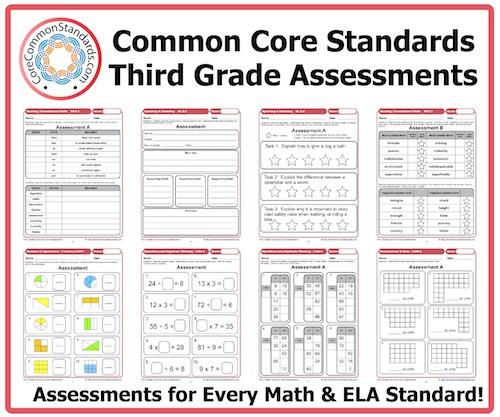 Third Grade Common Core Assessment Workbook Paperback