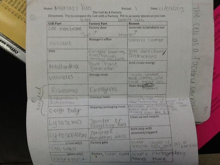 Manasi V (vatsmanasi) On Worksheets Samples