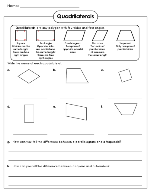 Quadrilateral Worksheets 3rd Grade