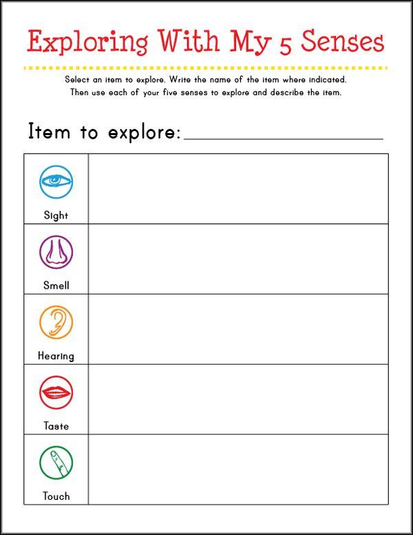 Five Senses Activities For Preschoolers