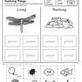 Science For Kindergarten Worksheets