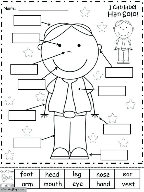 Free Printable Worksheets Kindergarten Body Parts – Spieleaffe Info