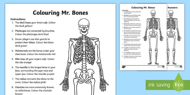 Colouring Mr  Bones Worksheet   Worksheet