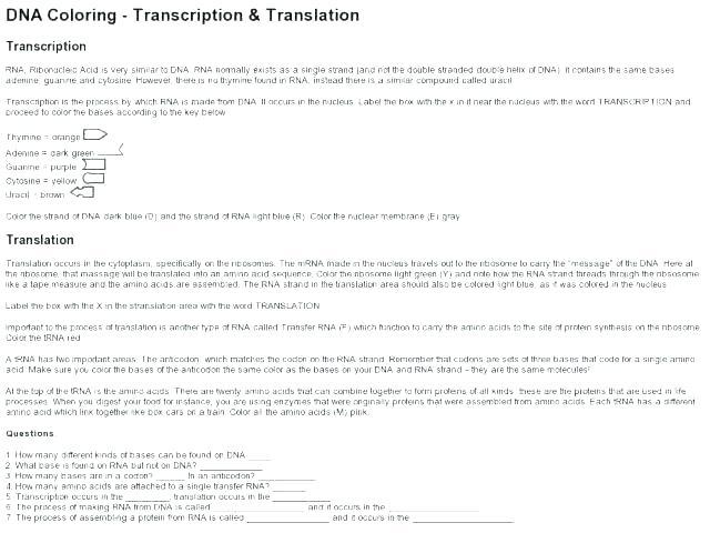 Dna Coloring Worksheet Cool Stock Of Transcription And Translation