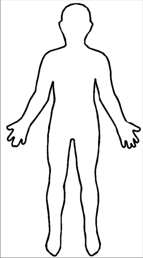 Free Blank Body, Download Free Clip Art, Free Clip Art On Clipart