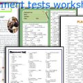 English Test For Beginners Worksheets