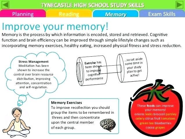 Visual Memory Worksheets