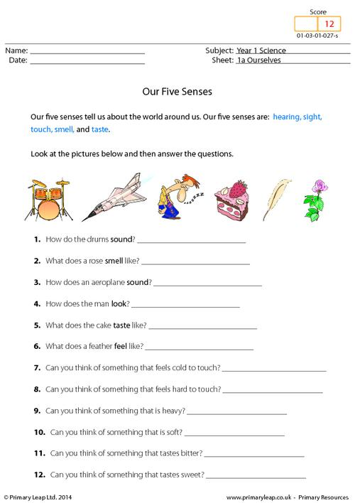 Five Sense Worksheet  New 18 Five Senses Worksheets For Year 1