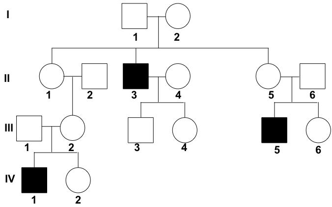 Pedigrees (practice)