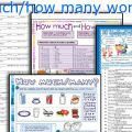 How Many How Much Worksheets