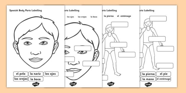 Spanish Body Parts Labelling Worksheet