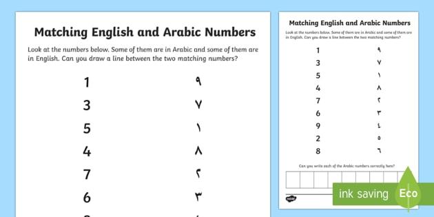 Uae Ey English And Arabic Number Matching Worksheet   Worksheet