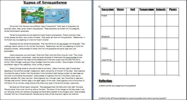 Image Result For Ecosystem Worksheets 5th Grade