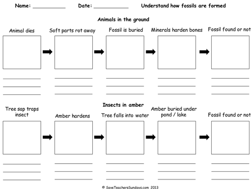 How Fossils Are Formed (worksheet) Ppt