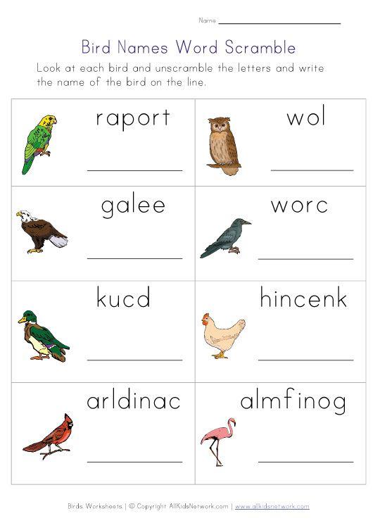 Birds Word Scramble Worksheet