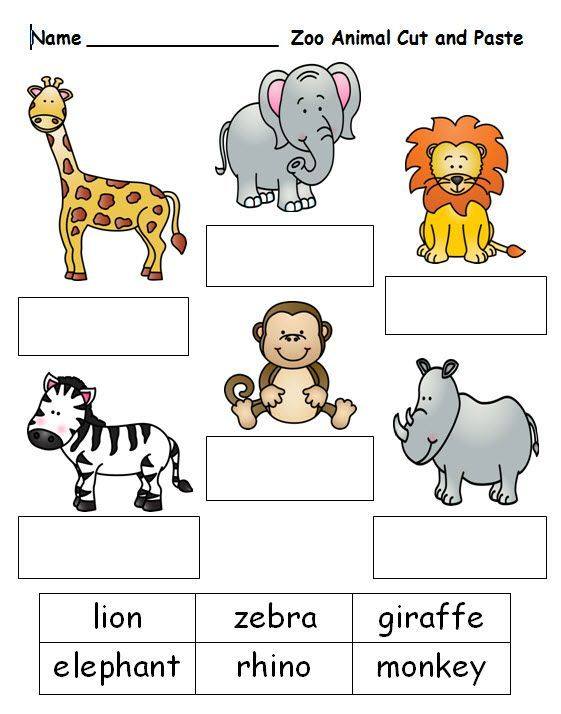 Free Worksheet For Cutting And Pasting Zoo Animal Names  See This