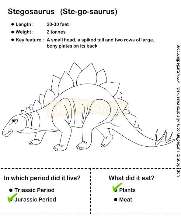Dinosaur Worksheet9
