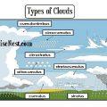 Types Of Clouds Worksheets Printable