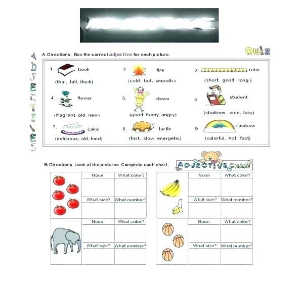 Basic Noun Worksheets