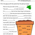 3rd Grade Science Worksheets Plants