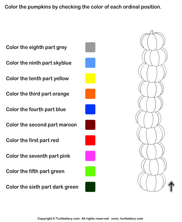 Color The Pumpkins By Checking Ordinal Position Worksheet