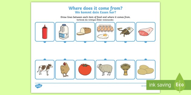 Where Does Food Come From  Worksheet   Worksheet English German