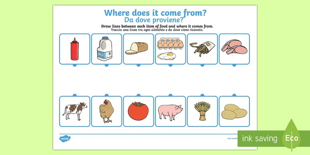 Where Does Food Come From Worksheet   Worksheet