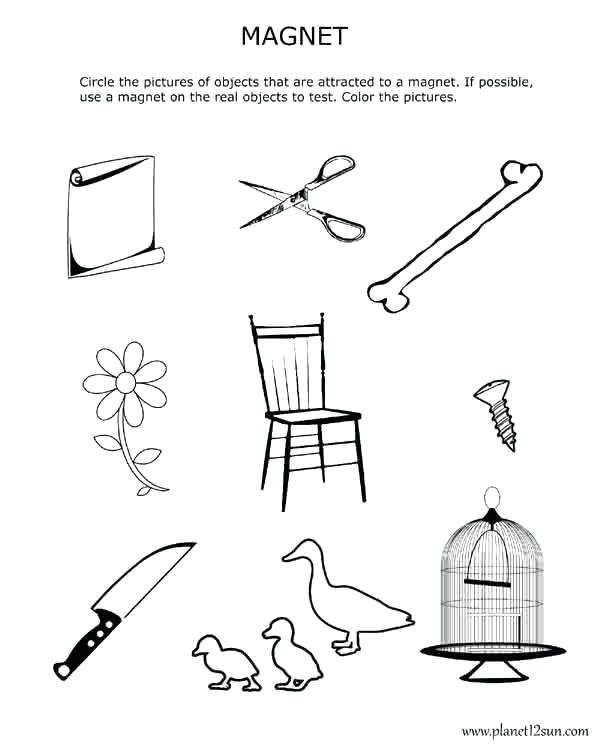 Magnetism Worksheets For Kids