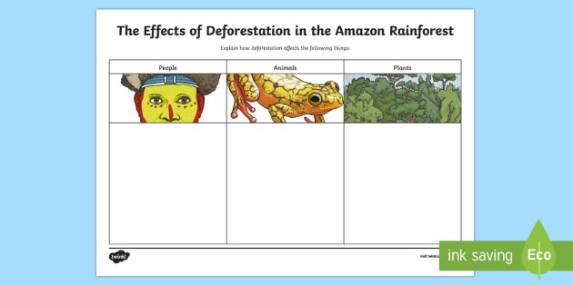 The Effects Of Deforestation In The Amazon Rainforest Writing