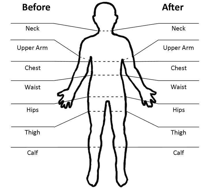 Body Measurement Worksheets