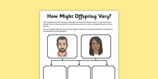 How Offspring Might Vary Worksheet   Worksheet