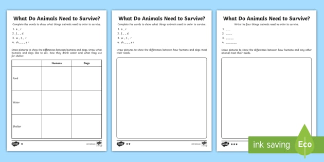 Ks1 What Do Animals Need To Survive  Differentiated Worksheets