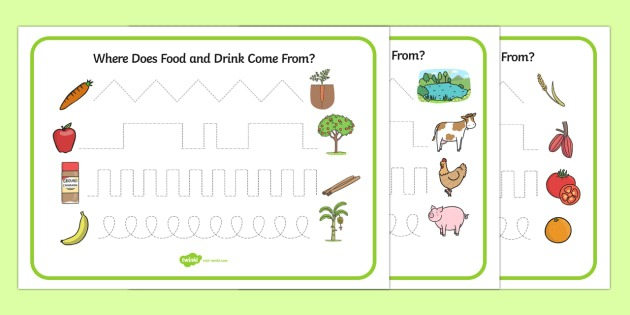 Where Does Food And Water Come From Pencil Control Worksheet