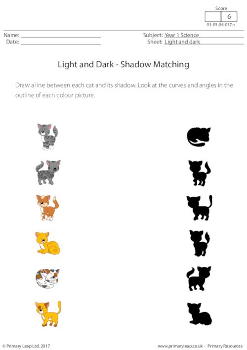 Shadow Matching (cats)