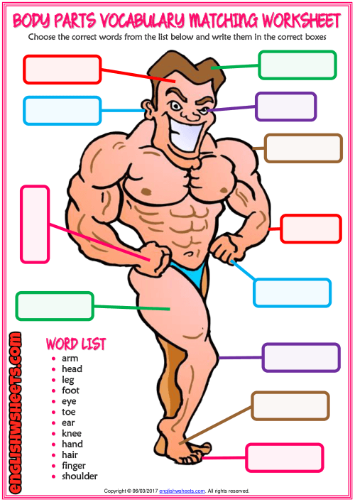 A Colorful Matching Exercise Esl Printable Worksheet For Kids To