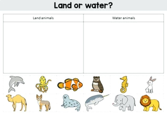 Animals Habitats Worksheets