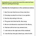 Homonyms Sentences Worksheets