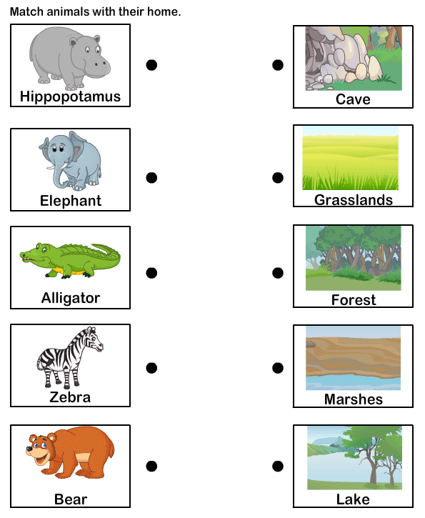 Students Could Match The Animal To Its Habitat Independently Or In