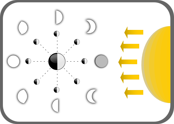 Diagram Of Moon Phases Clip Art At Clker Com