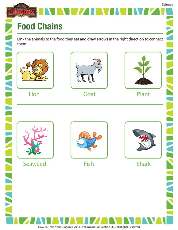 Food Chains – Printable 2nd Grade Science Worksheet