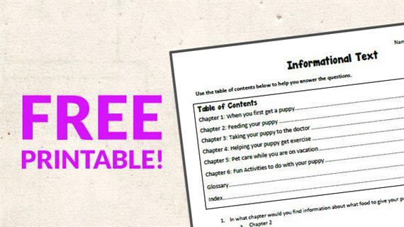Free Printable  Informational Text Worksheet