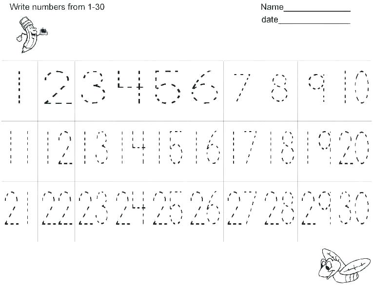 Tracer Worksheets – Petpage Co