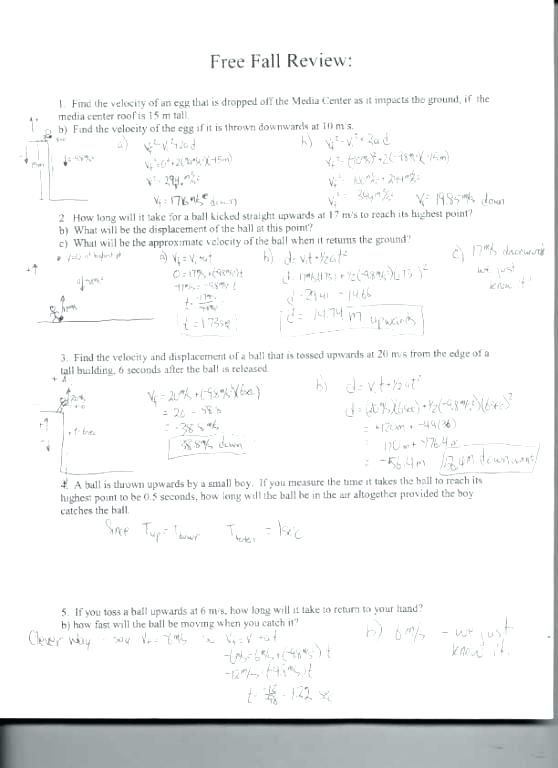 Physics Force Worksheets With Answers Friction Gravity And Elastic