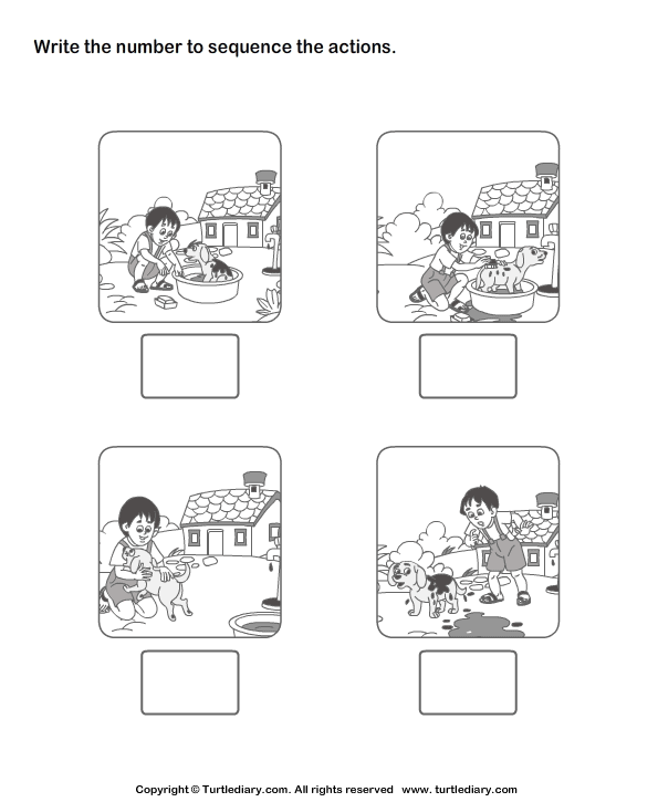 Picture Sequencing Boy Washing His Pet Worksheet