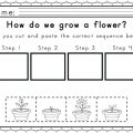 Sequence Worksheets For Kids