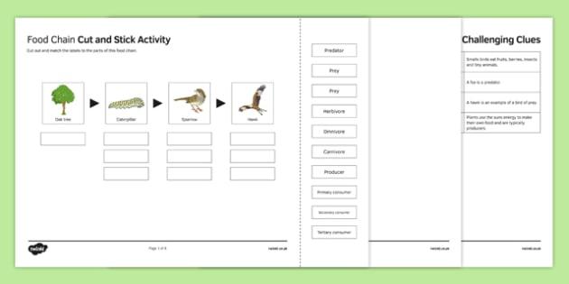 Woodland Food Web Cut And Stick Worksheet   Worksheet, Worksheet