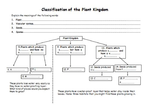Adorable Biology Worksheets Animal Kingdom With Additional
