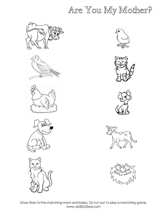 Animal Family Worksheet Worksheets For All