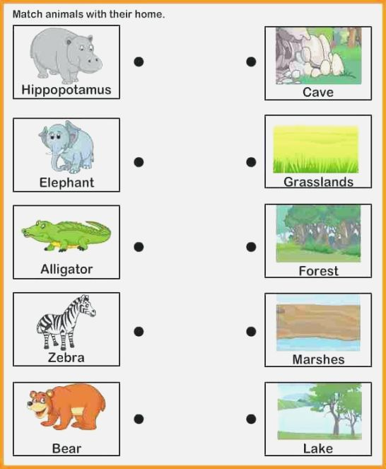 Crazy Matching Animals To Their Habitats Printables