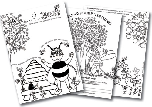 A Fun Way For Kids To Learn About Our Amazing Pollinators
